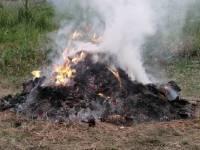 Budakeszi aktuális - Az avar és a kerti hulladék égetésének szabályai