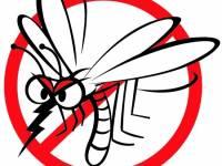 Tájékoztató a szúnyogok elleni védekezésről